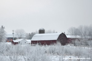 Frost-Covered-Barn